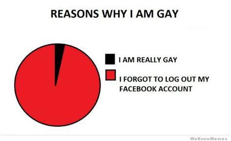 Im Gay Meme - reasons why i am gay weknowmemes