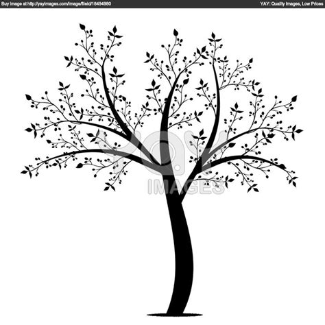 olive tree coloring sheets coloring pages
