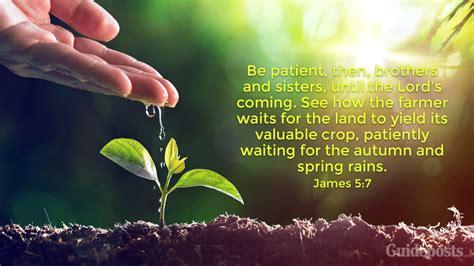 bible verses  spring