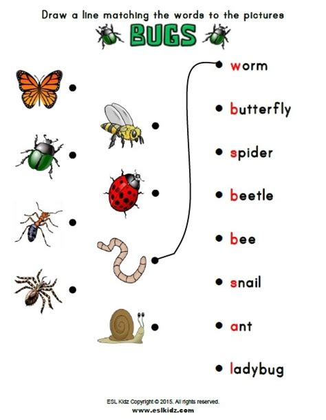 kids bug and insects worksheets bugs activities games and worksheets for kids