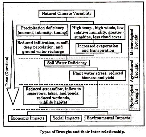 Drought Essay by Drought Essay On Drought With Diagrams
