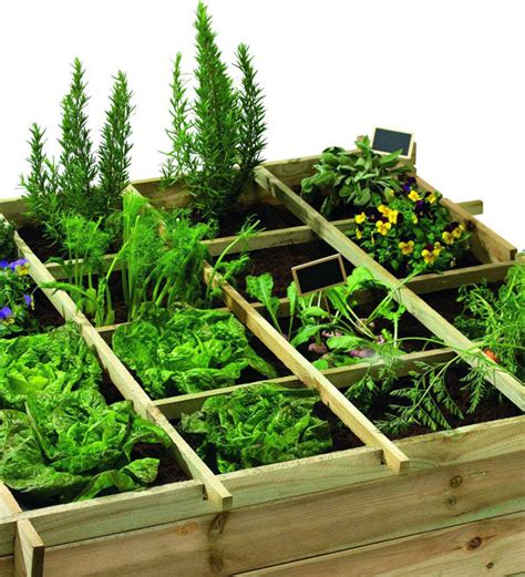 Faire Pousser Legumes Interieur by Faire Pousser Legumes Interieur Solutions Pour Un Mini
