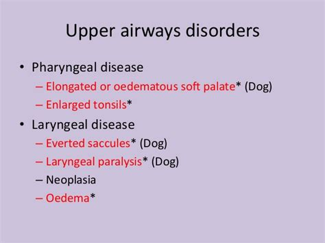 tachypnea in dogs differential dyspnea tachypnea small animal medicine