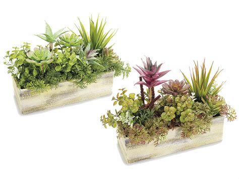 composizione piante grasse in vaso composizione di piante grasse artificiali in vaso di legno