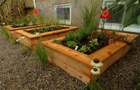 Veg Planter by Why You Should Build A Vegetable Garden Now