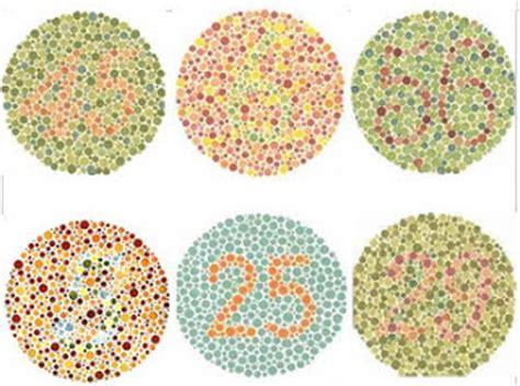 gambar tes buta warna lengkap  ujian tes gambat