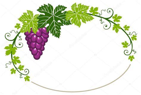 imagenes de uvas sin fondo marco de uvas con hojas sobre fondo blanco archivo