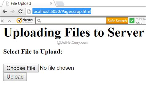 Simple Node Js File Upload | upload files using node js freeapinow com