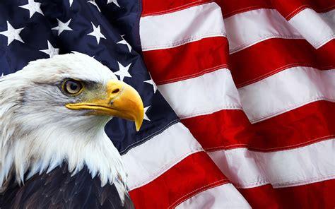 american flag  bald eagle photo symbols  north