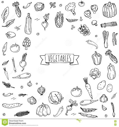 vegetable doodle vector free vegetables icons set stock vector illustration of corn