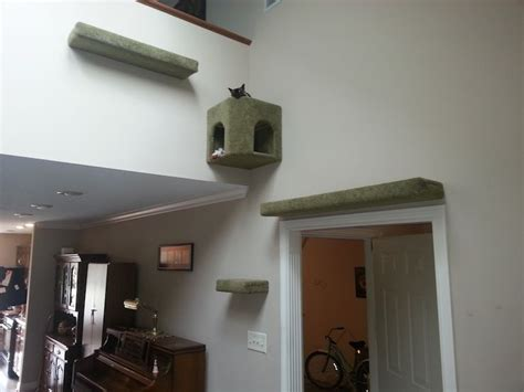 cat wall furniture 1000 images about cat shelves condos trees perches on