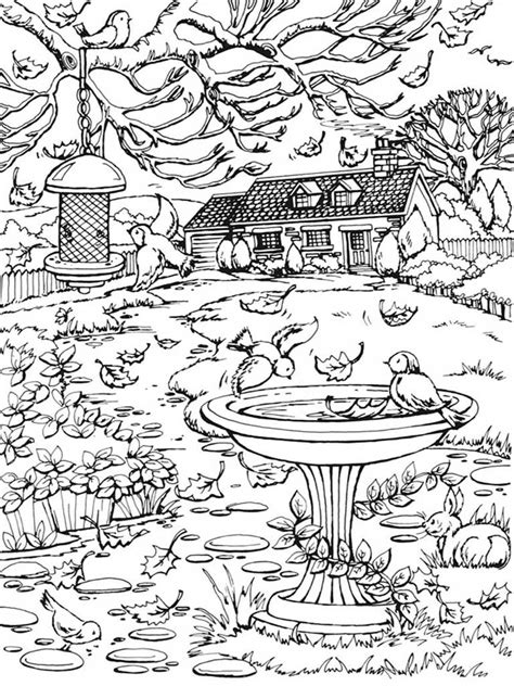 Autumn Scenes Coloring Book For Adult   Realistic Coloring