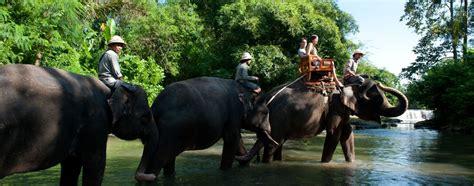 Bali Zoo Zoo With Lunch A Child bali zoo park putu bali tour guide