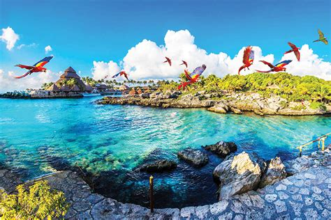imagenes hermosas de xcaret el mundo de los ni 241 os llega a xcaret jet news