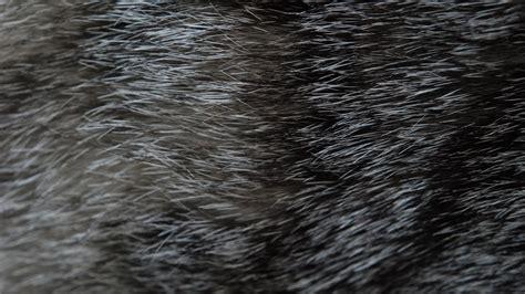 home texture textures abduzeedo