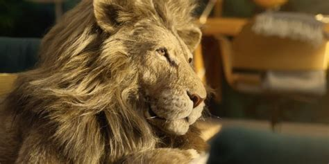 ikea   friendly lion relax  greatness  charming  ad adweek