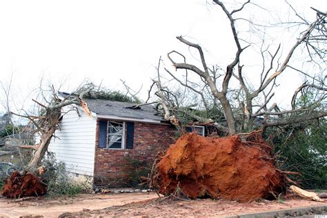 home insurance trees close to house why you shouldn t rush to file that homeowners insurance claim thestreet