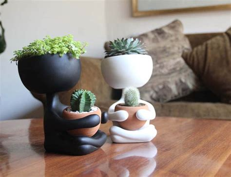 cool planter  plant lovers design swan
