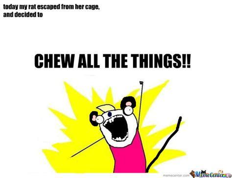 All Things Meme - all the things by amandapanda meme center