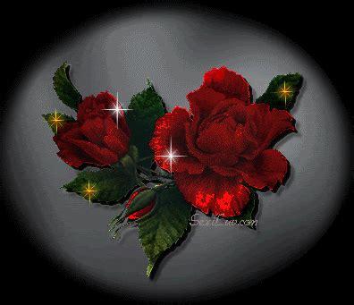 imagenes rosas brillantes imagenes de amor con movimiento imagenes de plantas para
