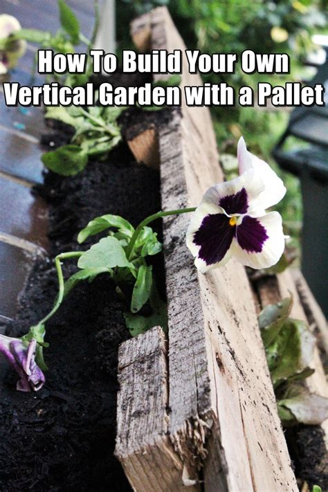 how to build your own vertical garden with a pallet shtf