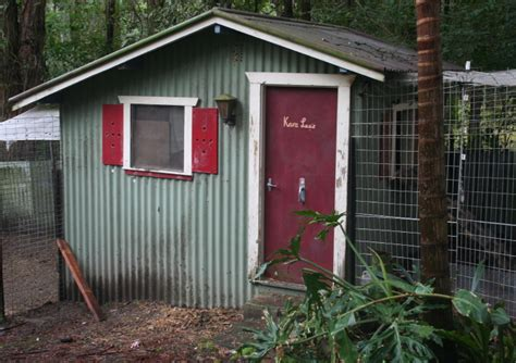 Soundproof Shed by The Chicken Managing Roosters With Only One
