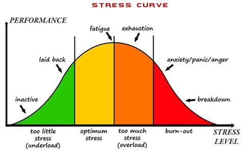the stress test how pressure can make you stronger and sharper books make sleep a priority to deal with chronic stress