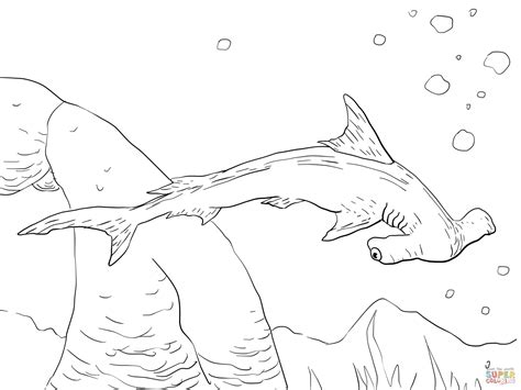 Realistic Shark Coloring Pages realistic sea animal coloring pages shark www imgkid