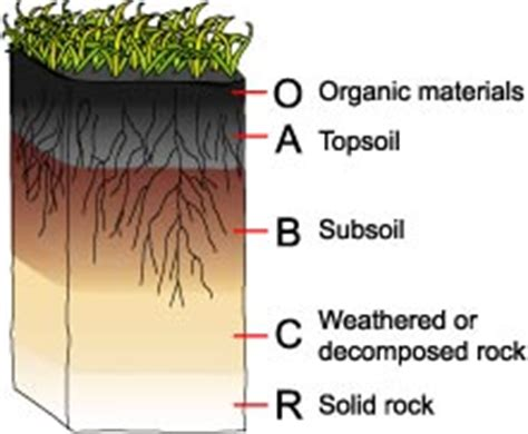 soil horizons diagram determining the right type of soil for your project