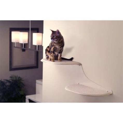 best scratching posts for cats cat shelves cat stands
