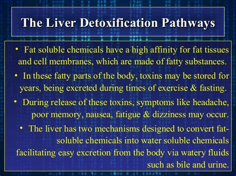 Detoxing Soluble Toxins by Hepatic Effects Of Dermatological Drugs
