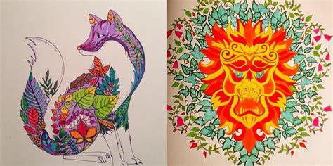secret garden coloring book target zoology coloring book paperback m elson secret