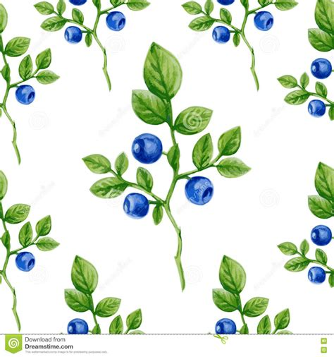 seamless nature pattern vector watercolor blueberry ornament with berry nature theme