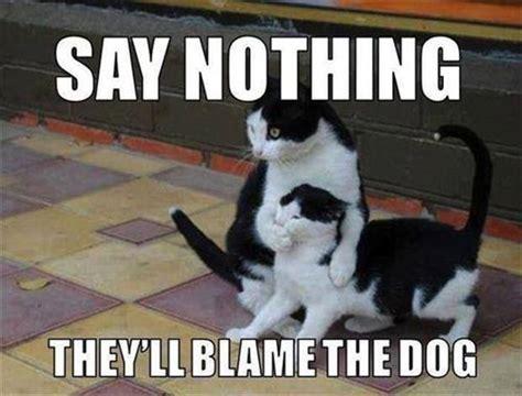 Nothing Meme - say nothing