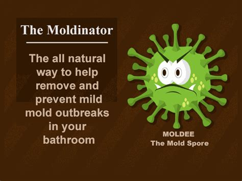best way to get rid of mould in bathroom best way to remove mold from shower grout