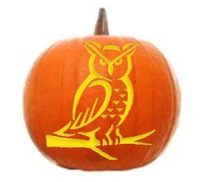 ideas   halloween  scary  wildlife