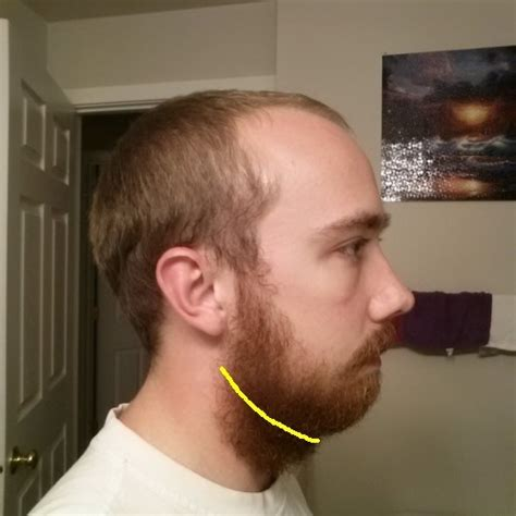 weak chin hairstyles reddit advice just grow a beard if you have a weak jawline
