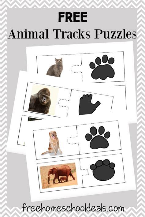 printable animal tracks flashcards gigantic list of homeschool freebies deals for 7 8 16