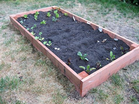 Build Your Own Garden Box Build Your Own Vegetable Garden