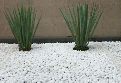 decoracion jardines con piedras blancas decoraci 243 n jard 237 n utiliza piedras blancas reformas