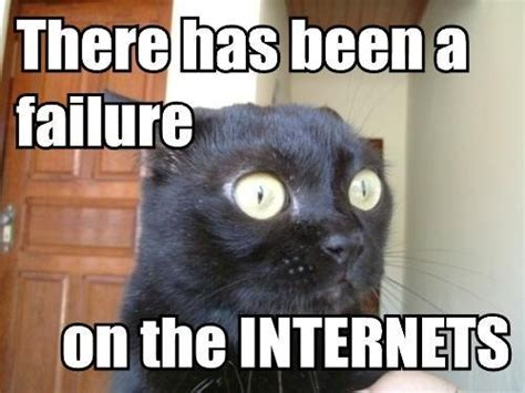 Lol Cat Meme - lol cats gt