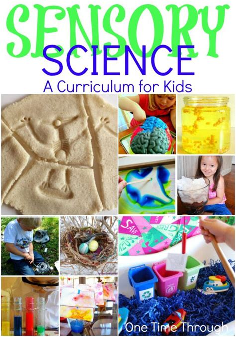 lesson plan for teaching how to blowdry hair 17 best images about science activities for preschool and