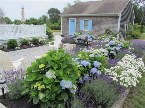 garden and outdoor spaces hydrangea cottage