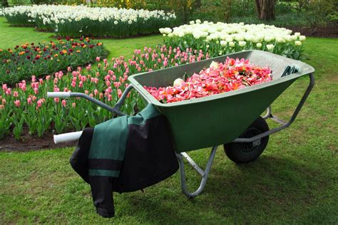 Backyard Gardening by Free Images Work Grass Lawn Wheel Cart Tool