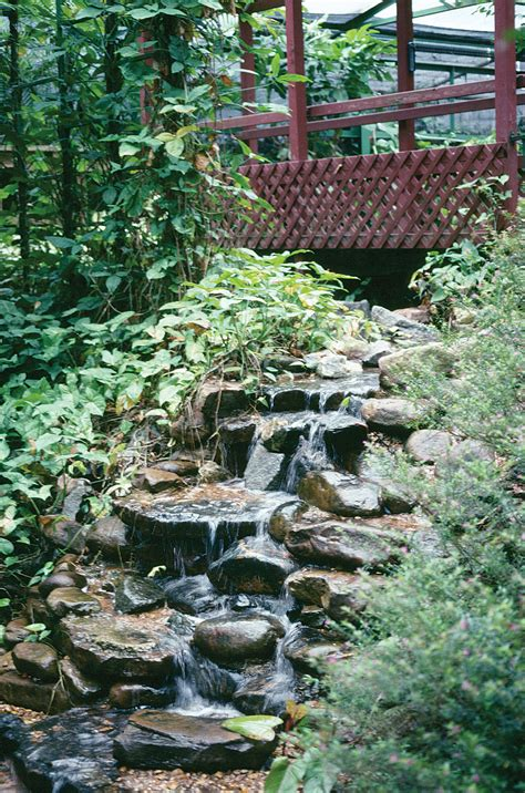 landscape solutions georgia gardening web articles