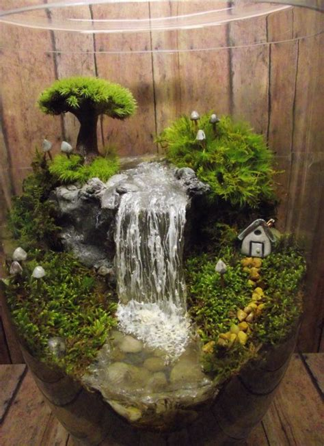 add a miniature waterfall pond or river to your terrarium