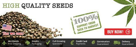 marijuana seed bank usa indoor marijuana seeds for sale marijuana seeds