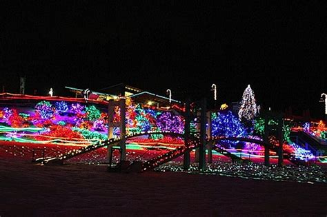zoo lights tacoma ダウンタウン 近郊で気軽に行けるクリスマス満喫イベントまとめ アメリカ シアトル特派員ブログ 地球の歩き方