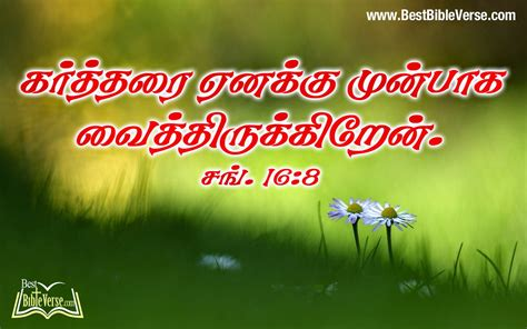 Bible Verses About Ls by New Bible Words Images Driverlayer Search Engine