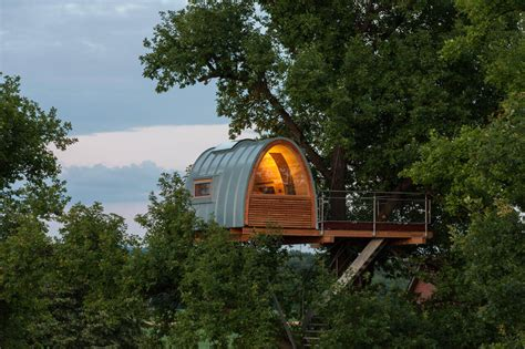 luxury cool tree house designs  forces